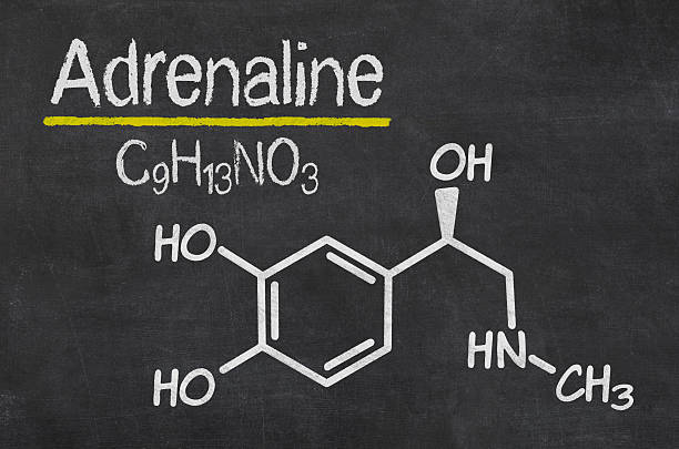 Blackboard with the chemical formula of Adrenaline stock photo