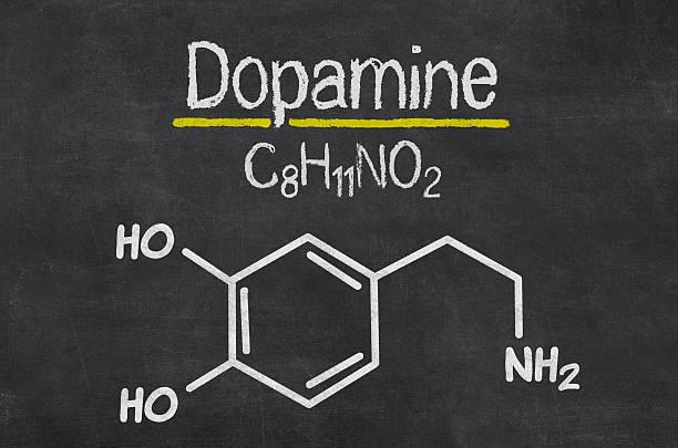 Blackboard with the chemical formula of dopamine stock photo