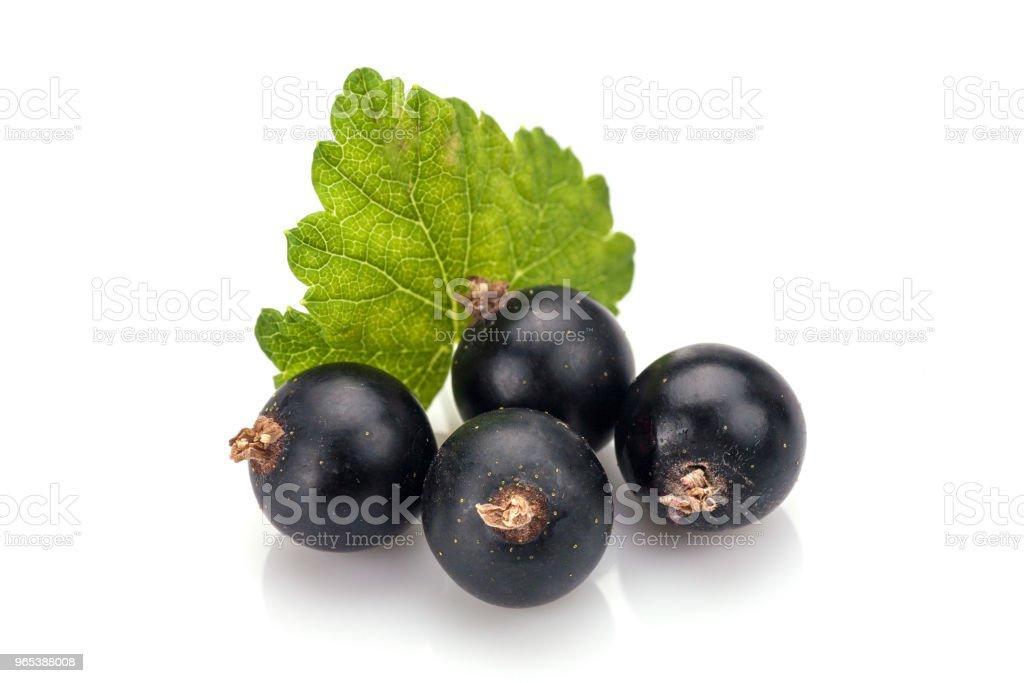 Blackcurrants royalty-free stock photo