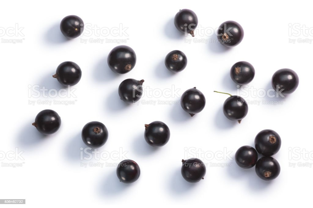 Blackcurrants Ribes nigrum, top view, paths stock photo