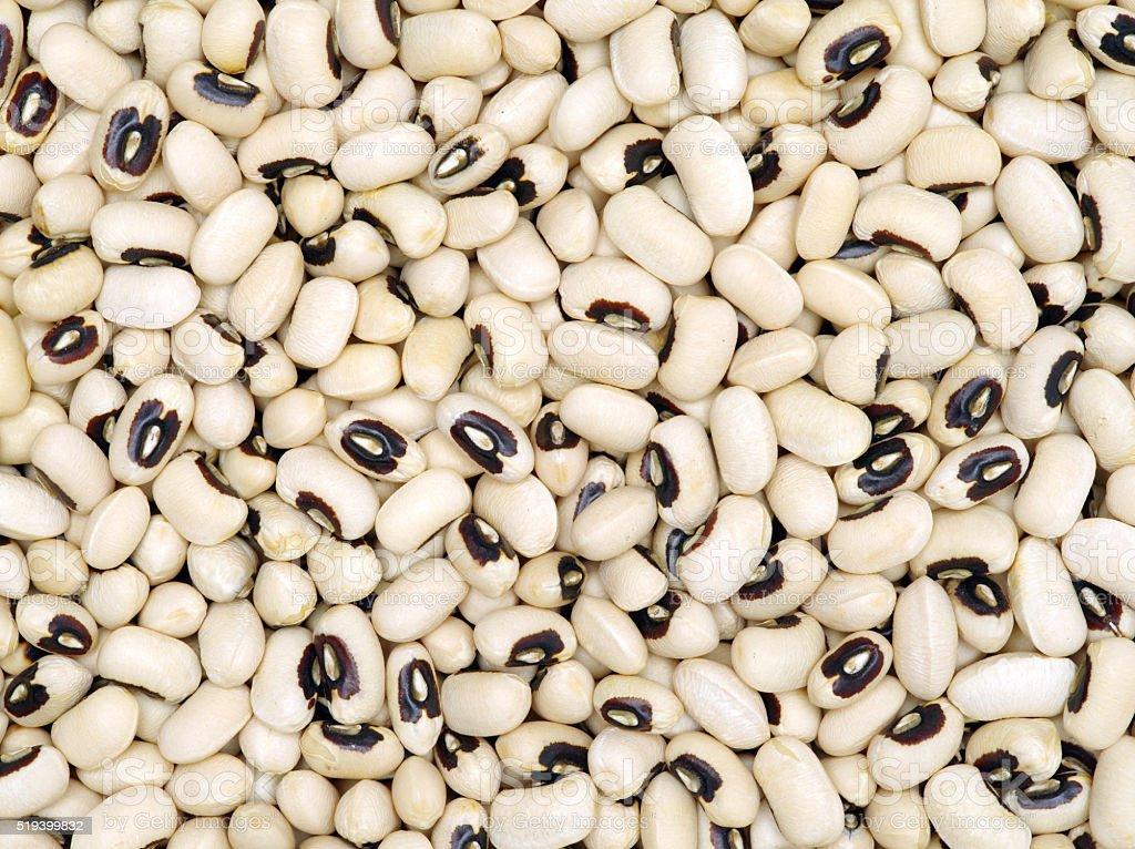 Black-eyed Beans texture stock photo