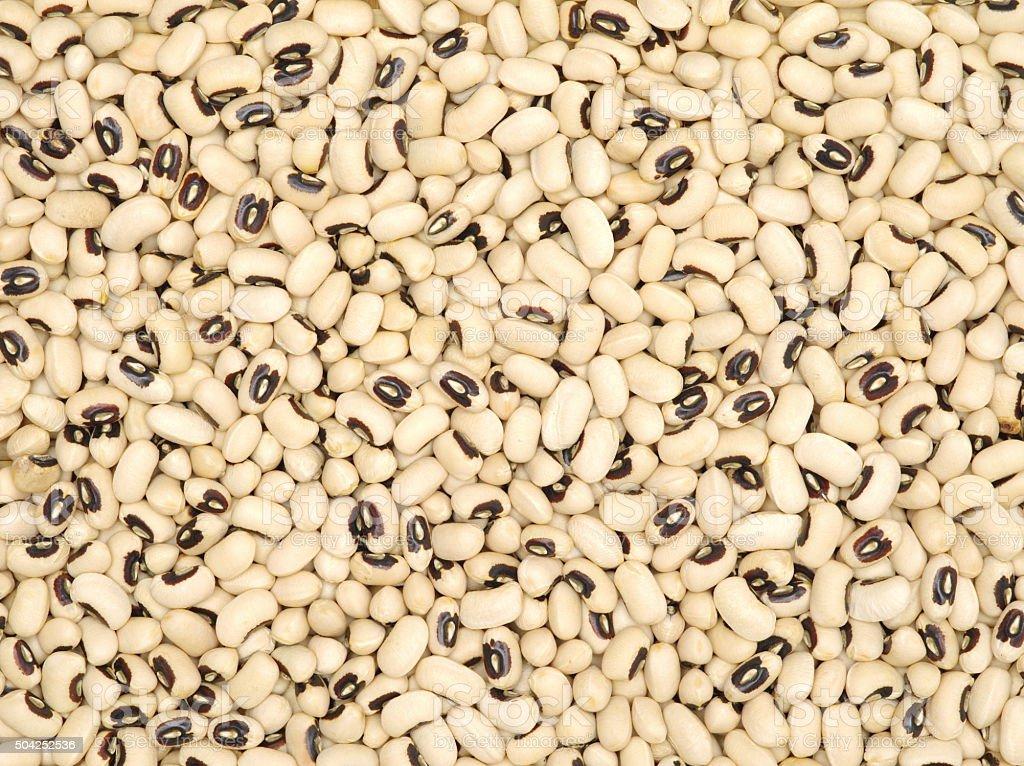 Black-eyed peas closeup. stock photo