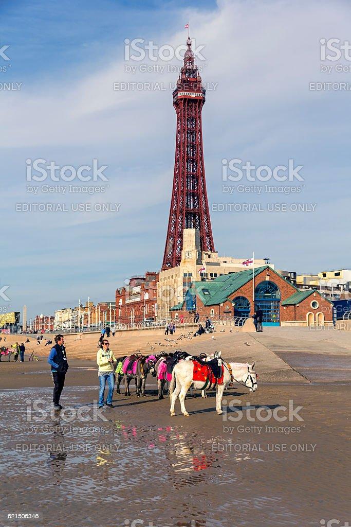 Blackpool Tower  photo libre de droits