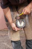 Blacksmith fits new horseshoes on