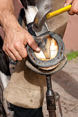 Blacksmith hammering a nail in a horseshoe