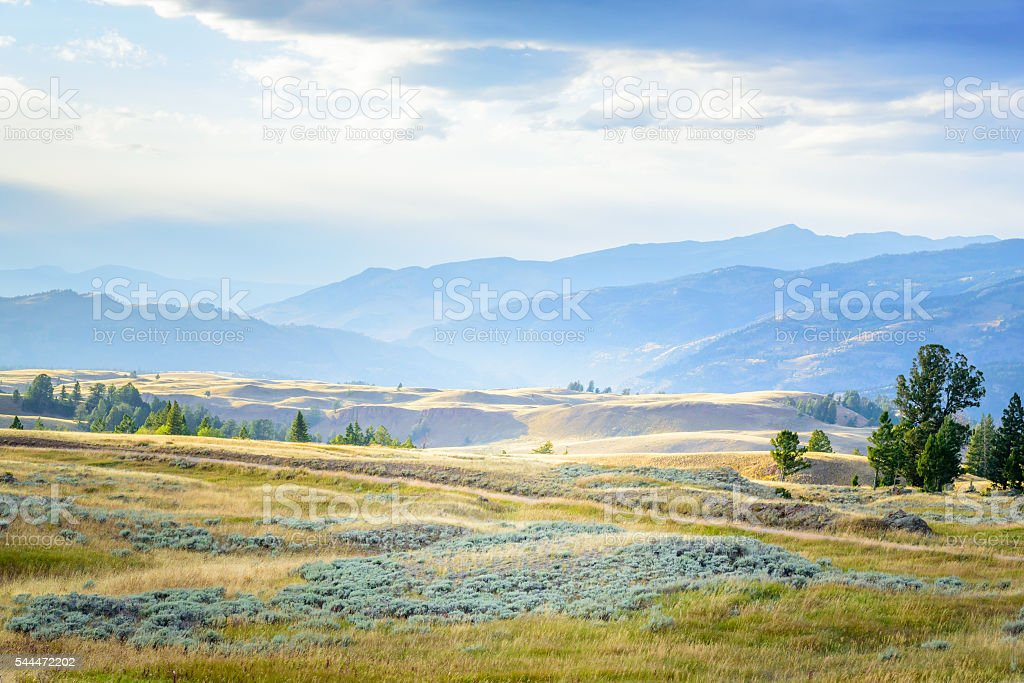 Blacktail Plateau in Yellowstone National Park stock photo