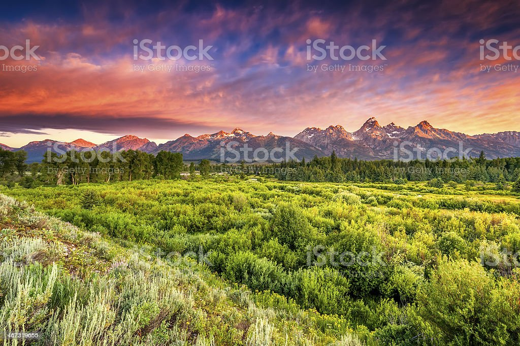 Blacktail Ponds Overlook stock photo