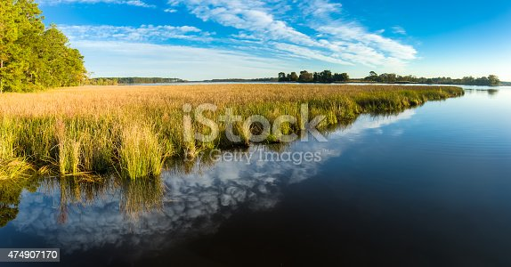 istock Blackwater National Wildlife Marsh Grass and Cloud Formation - Panorama 474907170