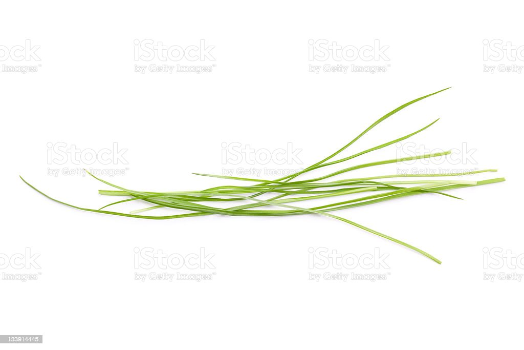 Blades of Grass stock photo