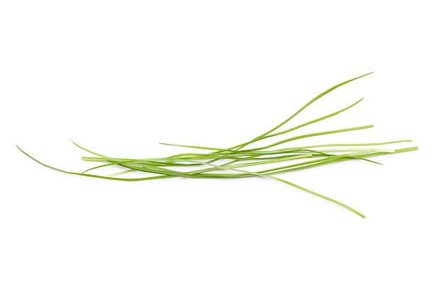 Blades of Grass stock photo