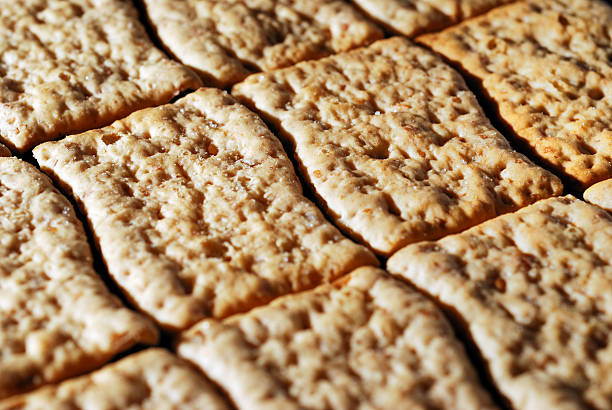 Bland wheat crackers in a row stock photo