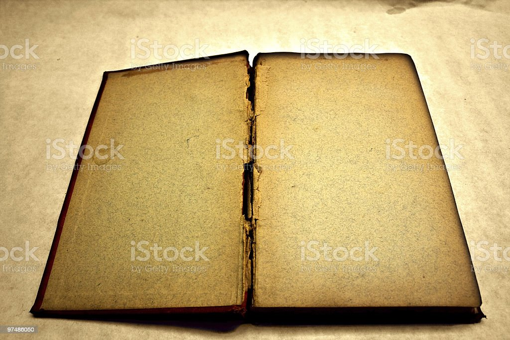 Blank and antique open book royalty-free stock photo