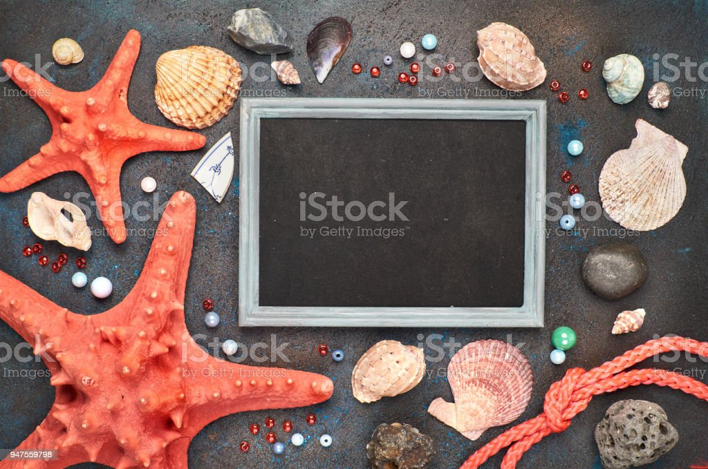Blank blackboard with sea shells, rope and star fish on dark background, copy-space stock photo