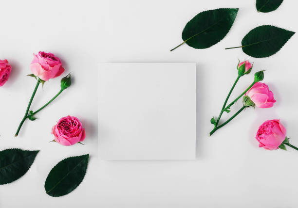 Blank card with pink roses and green leaves on a white background picture id695750380?b=1&k=6&m=695750380&s=612x612&w=0&h=viybejzmj4chtw9ohzbvdtilgp g3ejqvstfk0uhsvw=