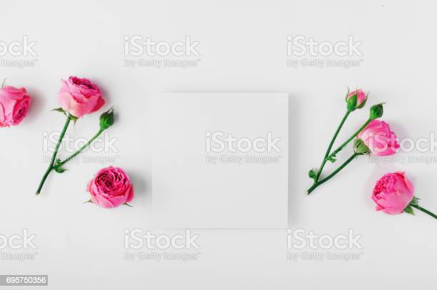 Blank card with pink roses on a white background picture id695750356?b=1&k=6&m=695750356&s=612x612&h=xtw2efpngaqufiyfnno2nzxvgxes2kawomzu8xovofu=