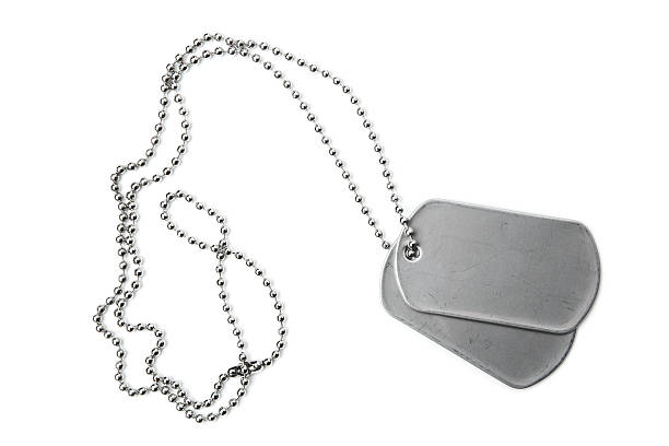 blank dogtags and ball chain on white background - chain object stock photos and pictures