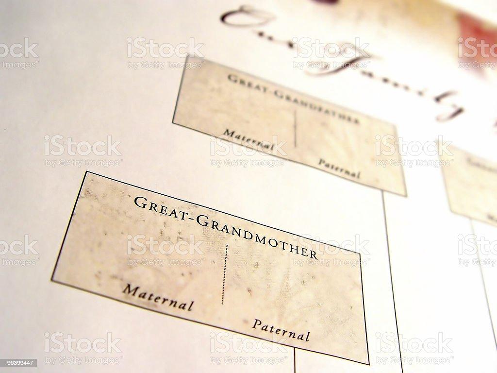 Vuoto Albero genealogico 2 - foto stock