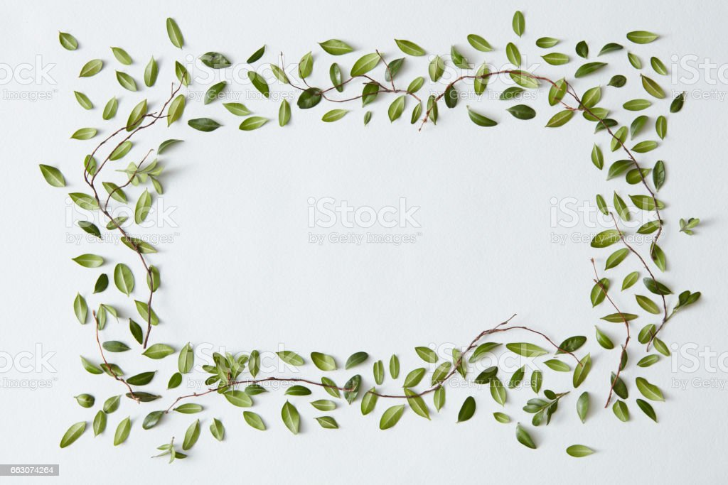 Blank frame with leaves stock photo