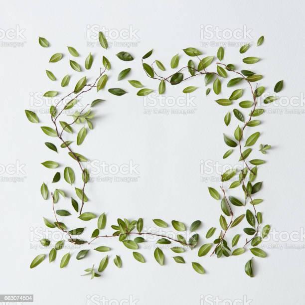 Blank frame with leaves picture id663074504?b=1&k=6&m=663074504&s=612x612&h=vhjecvxnpum9obmxbjgysurfmvj6ye9oc7946wbjfri=