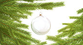 Blank glass christmas ball hanging on pine branch mockup, depth of field, 3d rendering. Empty xmas tree with transparent bauble mock up. Clear decor glas sphere on spruce mokcup template.