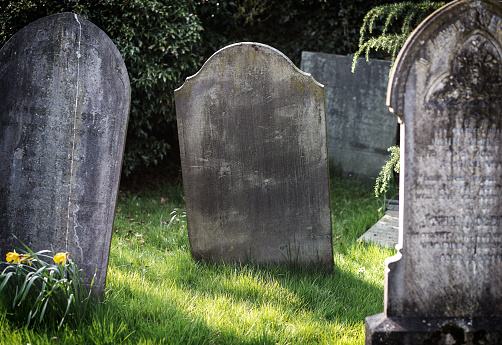Blank gravestone in graveyard. Old, decayed and grunge, ready for text. Trees and bushes in background.