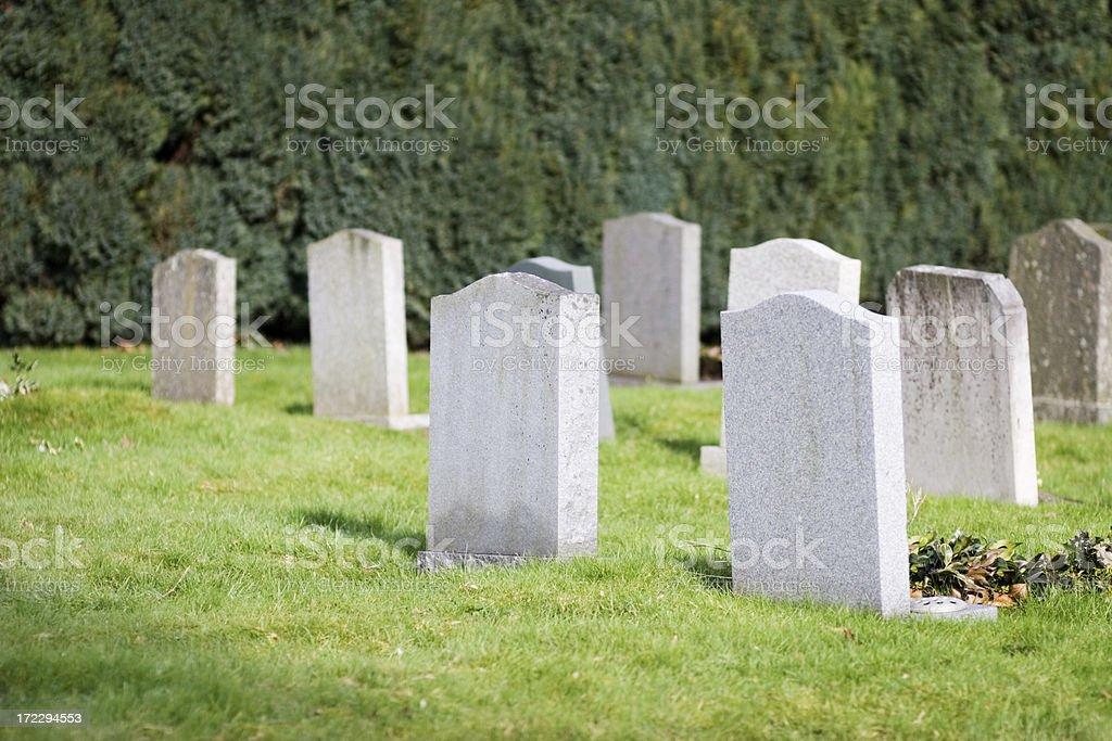 Blank gravestones royalty-free stock photo