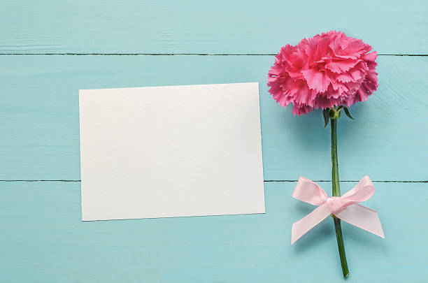 Blank greeting card with pink Carnation flower stock photo