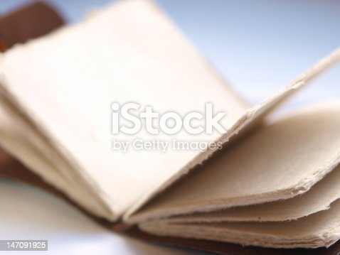 istock Blank Leather Book/Journal 147091925