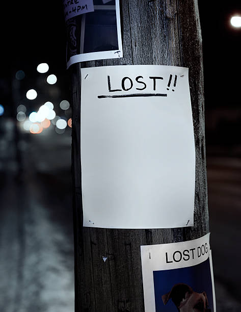 royalty free missing poster pictures images and stock photos istock