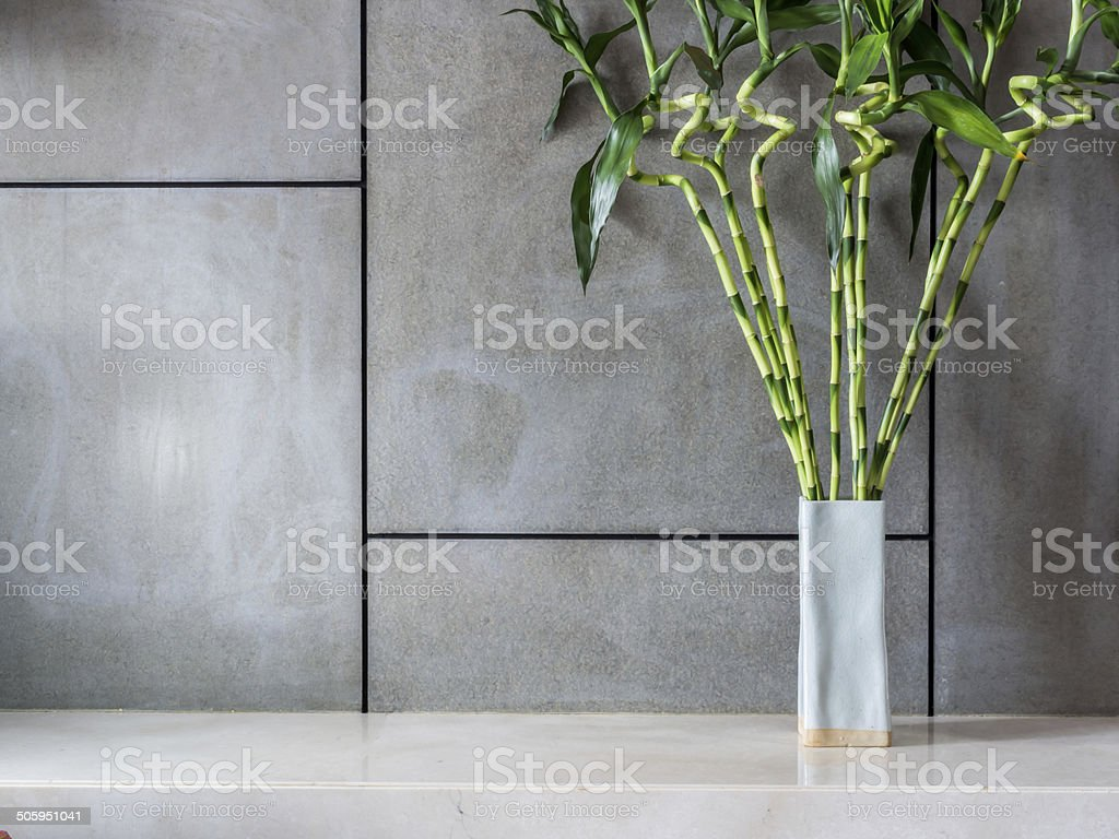 Blank modern room with vase of Lucky bamboo (Belgian evergreen) stock photo