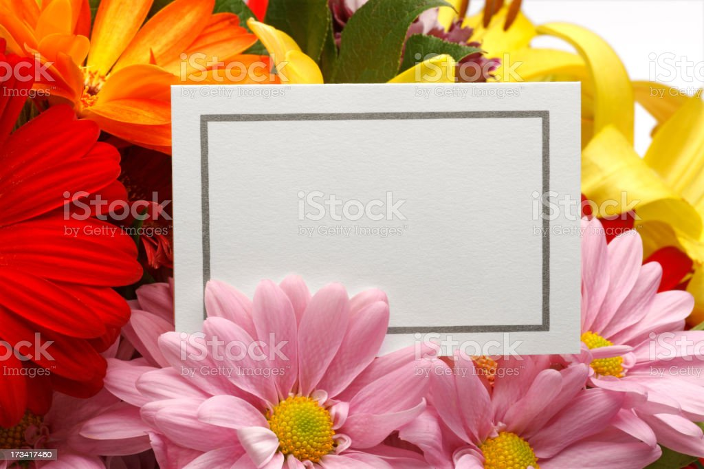 Blank Mother's Day Card stock photo
