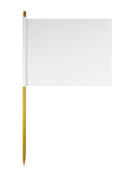 bandeira de papel em branco - palitinho - fotografias e filmes do acervo
