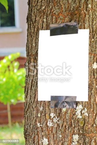 istock Blank paper on tree trunk 502300083