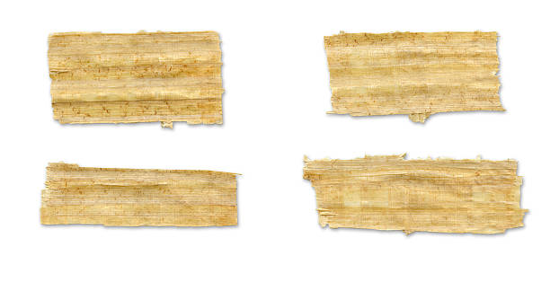 Blank paper Papyrus Torn Paper. papyrus paper stock pictures, royalty-free photos & images