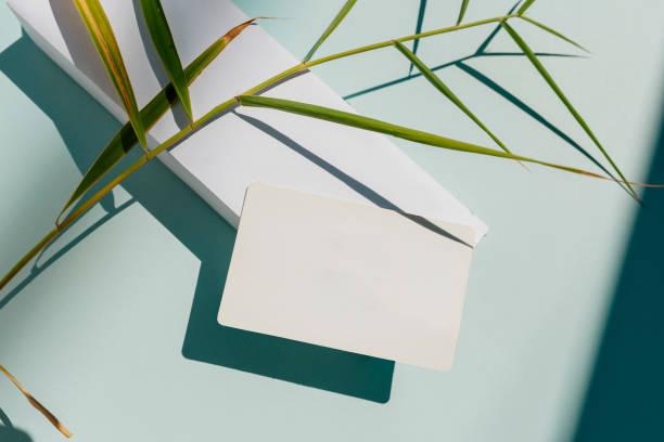 carte personnelle vierge, maquettes de papeterie avec lumière naturelle du soleil et ombres botaniques - business card mock up photos et images de collection
