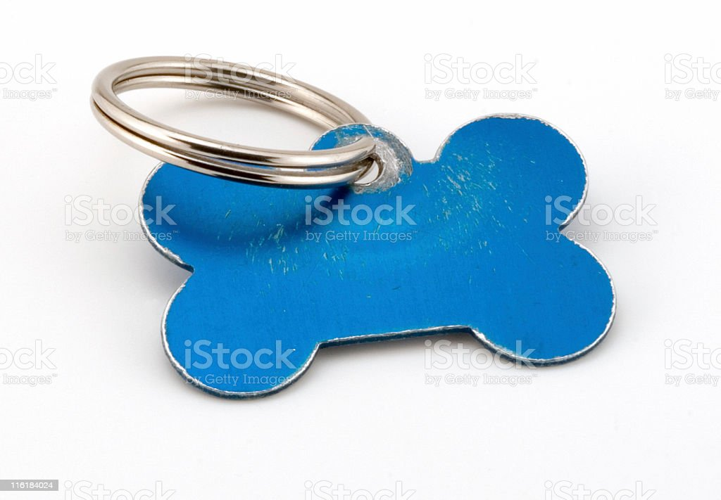 Blank Pet ID tag stock photo