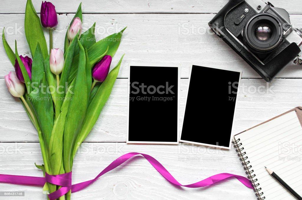 blank photo frames, vintage retro camera and purple tulip flower stock photo