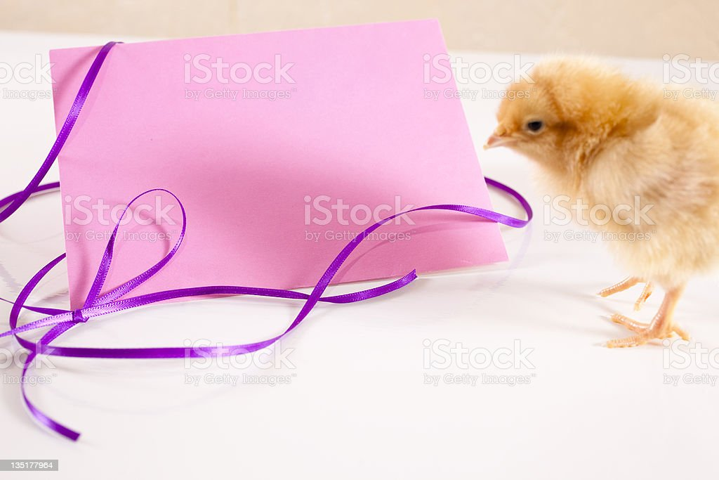 Blank Pink envelope for special day. royalty-free stock photo