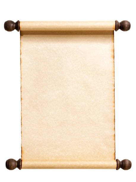 blank scroll isolated on white. - scroll stock photos and pictures