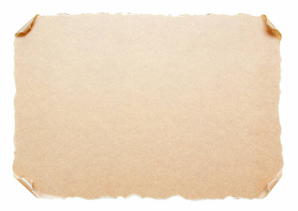 blank scroll paper background textured isolated on white - scroll stock photos and pictures