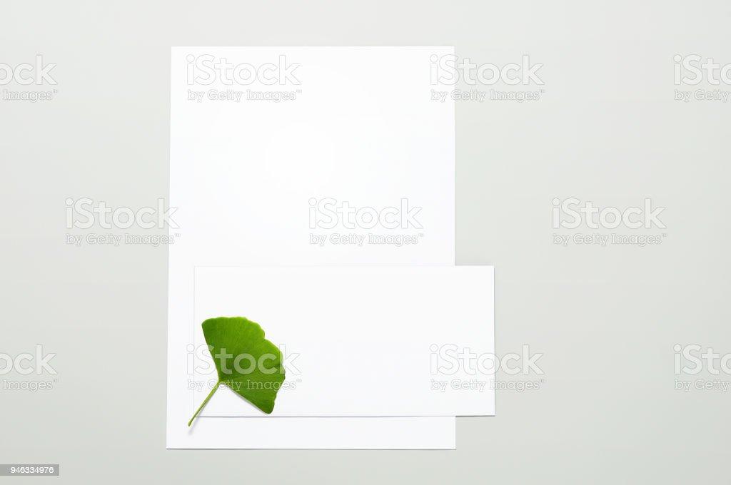 Feuilles blanches de la feuille de papier, enveloppe et ginkgo - Photo