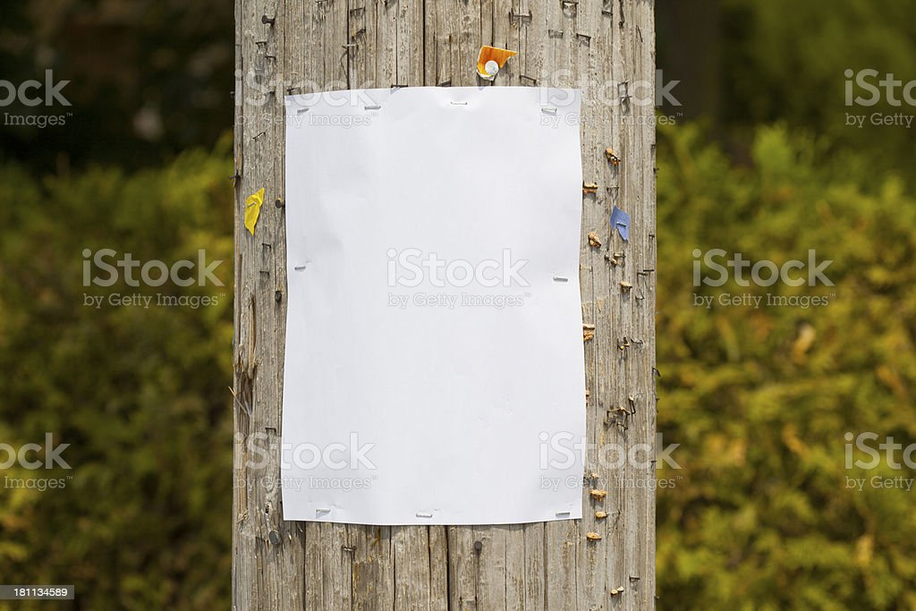 blank sign on telephone pole stock photo