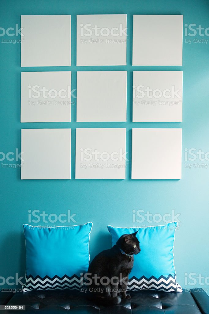 Blank Square Canvases stock photo