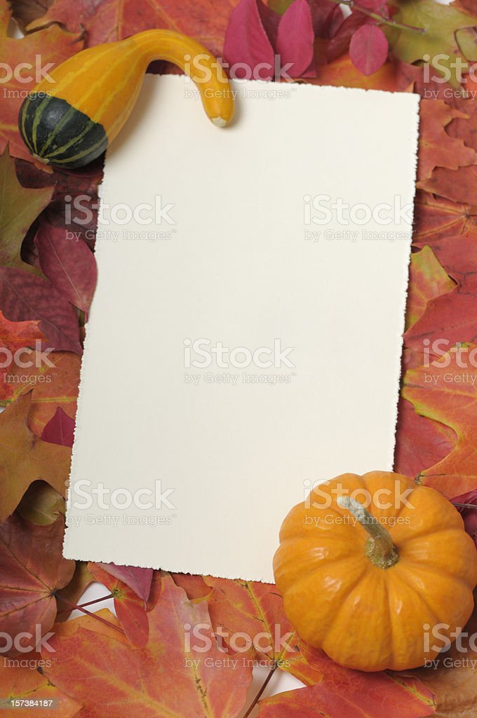 Blank thanksgiving card  framed by colorful leaves and small pumpkin royalty-free stock photo
