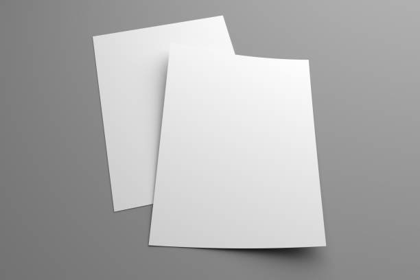 Blank two 3D illustration flyers mockup on gray stock photo