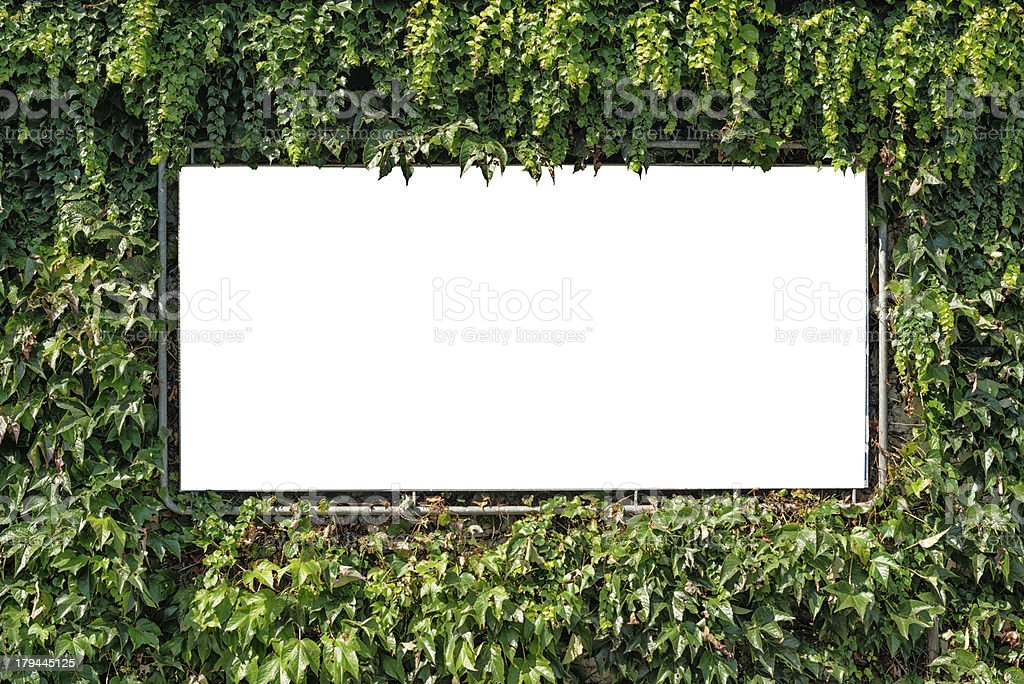 blank white billboard surrounded from green ivy royalty-free stock photo