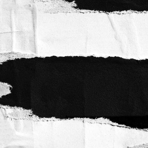 Blank white black old ripped torn paper crumpled creased posters grunge textures backdrop backgrounds placard Abstract, Abstract Backgrounds, Advertisement, Aging Process cut or torn paper stock pictures, royalty-free photos & images
