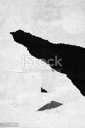 1087065964 istock photo Blank white black old ripped torn paper crumpled creased posters grunge textures backdrop backgrounds placard stock photo 1171748343