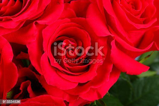 Blank White Gift Card On A Bed Of Red Rose Petals Ready For Your