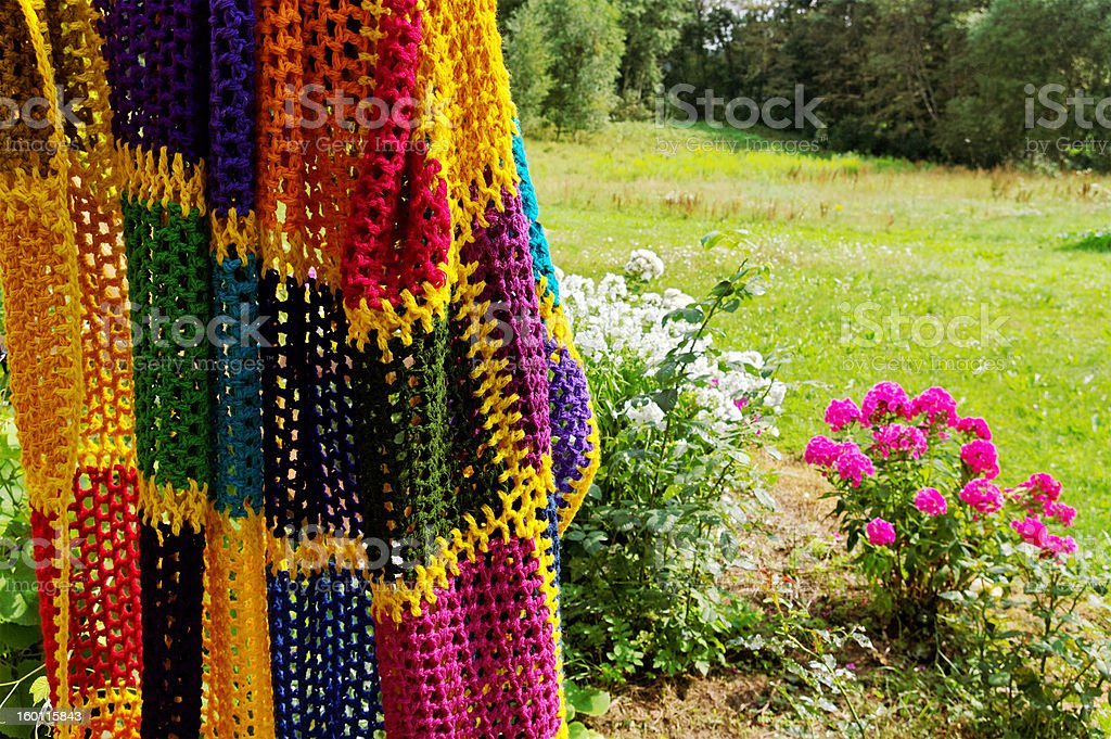 Blanket and flowers. stock photo
